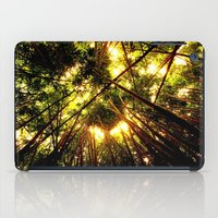 Bamboo Forest iPad Case