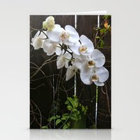 White Orchid Stationery Cards