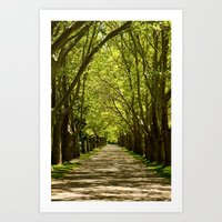Summer Tunnel Art Print