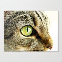 Emerald Cat Eyes Canvas Print