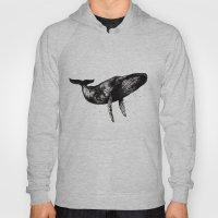 Humpback Whale Ink Hoody
