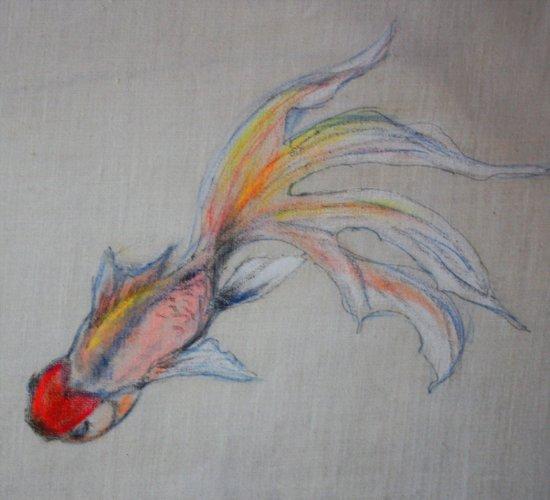Goldfish Pond (close up #3) Art Print