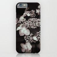 Black And White Botanica… iPhone 6 Slim Case