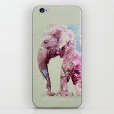 Cherry blossom Elephant iPhone & iPod Skin