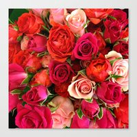 Oodles of Love Canvas Print