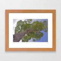 Under the giving tree Framed Art Print