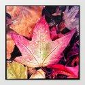 Fall At River Oaks Canvas Print