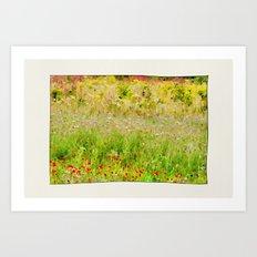 Wildflower Meadows. Art Print