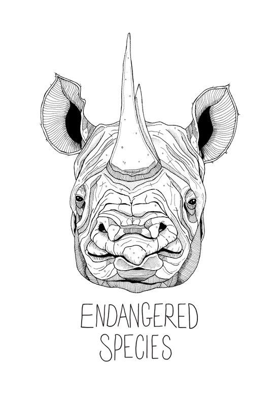 Endangered Species Rhino Art Print