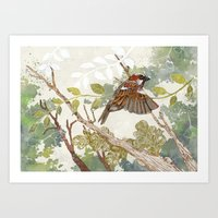 Flying away Art Print