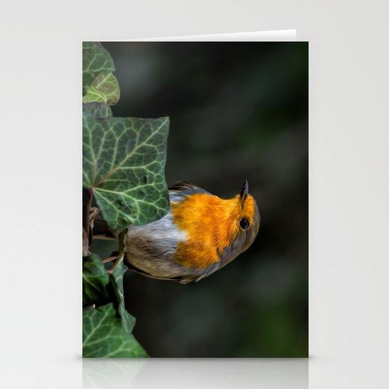 European Robin Stationery Card