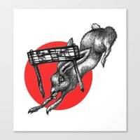 The Hare Wins At Last Canvas Print