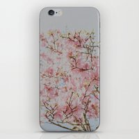 Pink Magnolias iPhone & iPod Skin