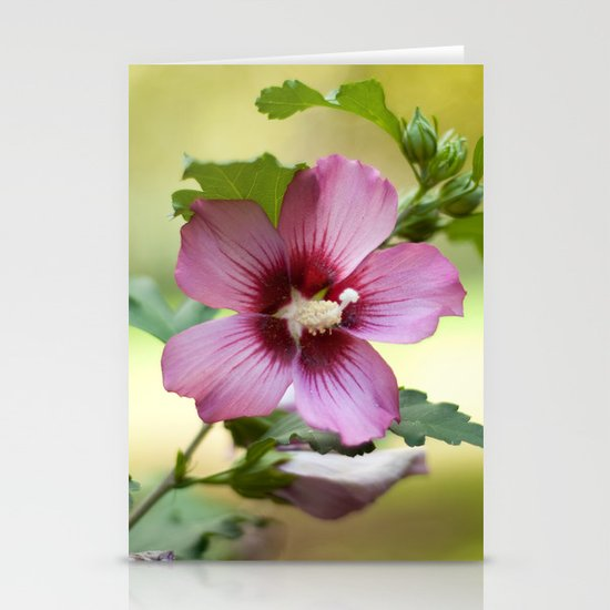 Hardy Hibiscus Stationery Card