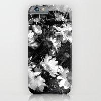 Sunspots 2 iPhone 6 Slim Case