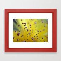 Pollen Pod Points Framed Art Print