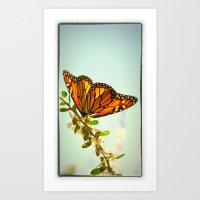Monarch Flower Art Print