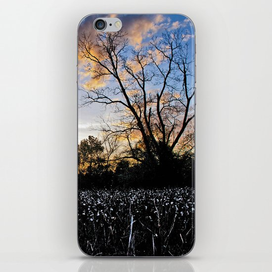 Early Morning in the Cotton Field iPhone & iPod Skin