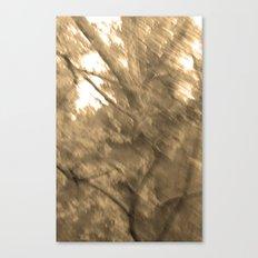 Treeage I - Sepia Canvas Print