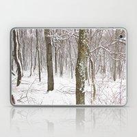 Spring Wonderland Laptop & iPad Skin