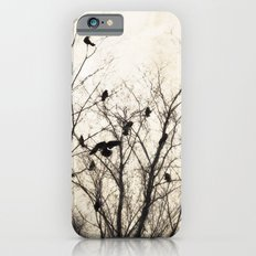 A Special Place iPhone 6s Slim Case