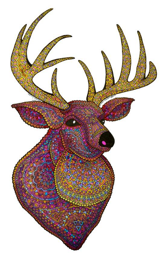 Darling, Detailed Deer Art Print