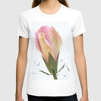faded bulb  Womens Fitted Tee White SMALL