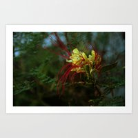 Spidery Red Art Print