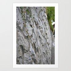 Vine and Rock Wall Art Print