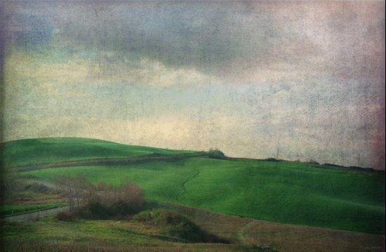 Toscana Vintage IV Art Print