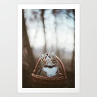 Cat In A Basket Art Print