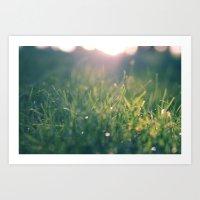 Green Gras Bokeh 1b Art Print