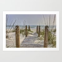 Walkway To Beach Art Print