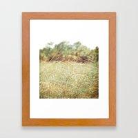 Sunlight Paints Us Gold Framed Art Print