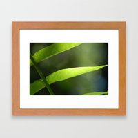 Light Through The Leaves Framed Art Print