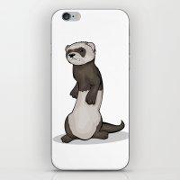 Wild Ferret iPhone & iPod Skin