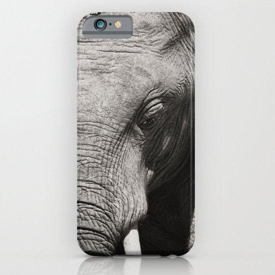African Elephant iPhone & iPod Case