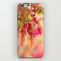 After The Rain Has Gone iPhone & iPod Skin