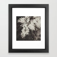 A Delicate Presence Framed Art Print