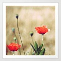 Vintage Summer - Poppy Art Print