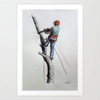 Arborist ,Tree Surgeon using stihl 020T chainsaw,husqvarna, art Art Print