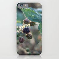 iPhone & iPod Case featuring blackberries by Photofairy