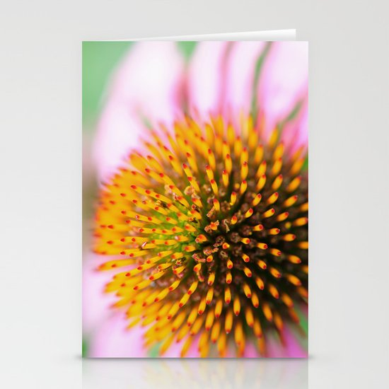 Coneflower Stationery Card