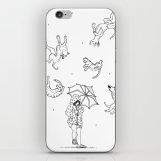Its Raining Cats and Dogs  iPhone & iPod Skin