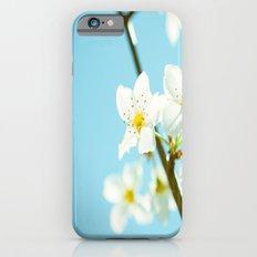 Blue & Blossoms iPhone 6s Slim Case