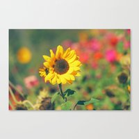 Bursting with Cheer Canvas Print