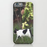 iPhone & iPod Case featuring Urban Jungle by @lauritadas
