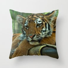 Baby Tiger Throw Pillow