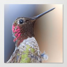 Bird color 5 Canvas Print