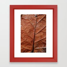 Hoja Framed Art Print